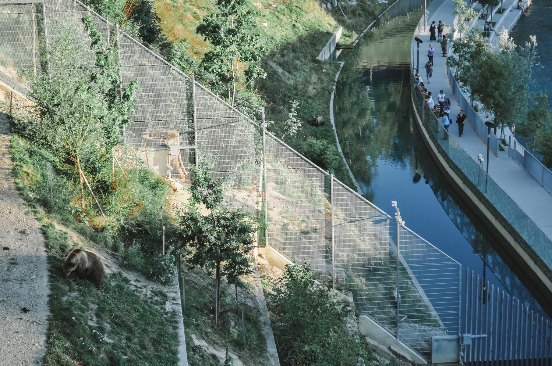 La Fosse aux ours de Berne