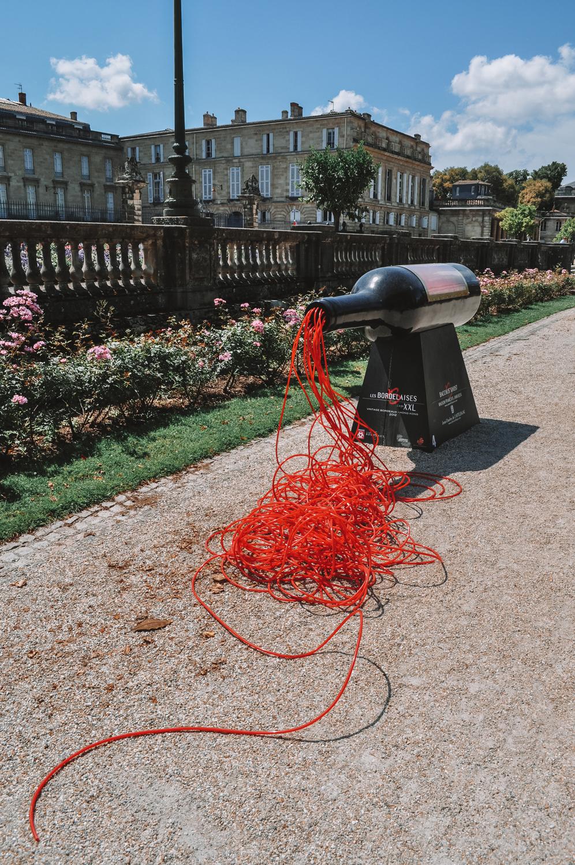 L'emblème de Bordeaux : son vin rouge bien sûr !