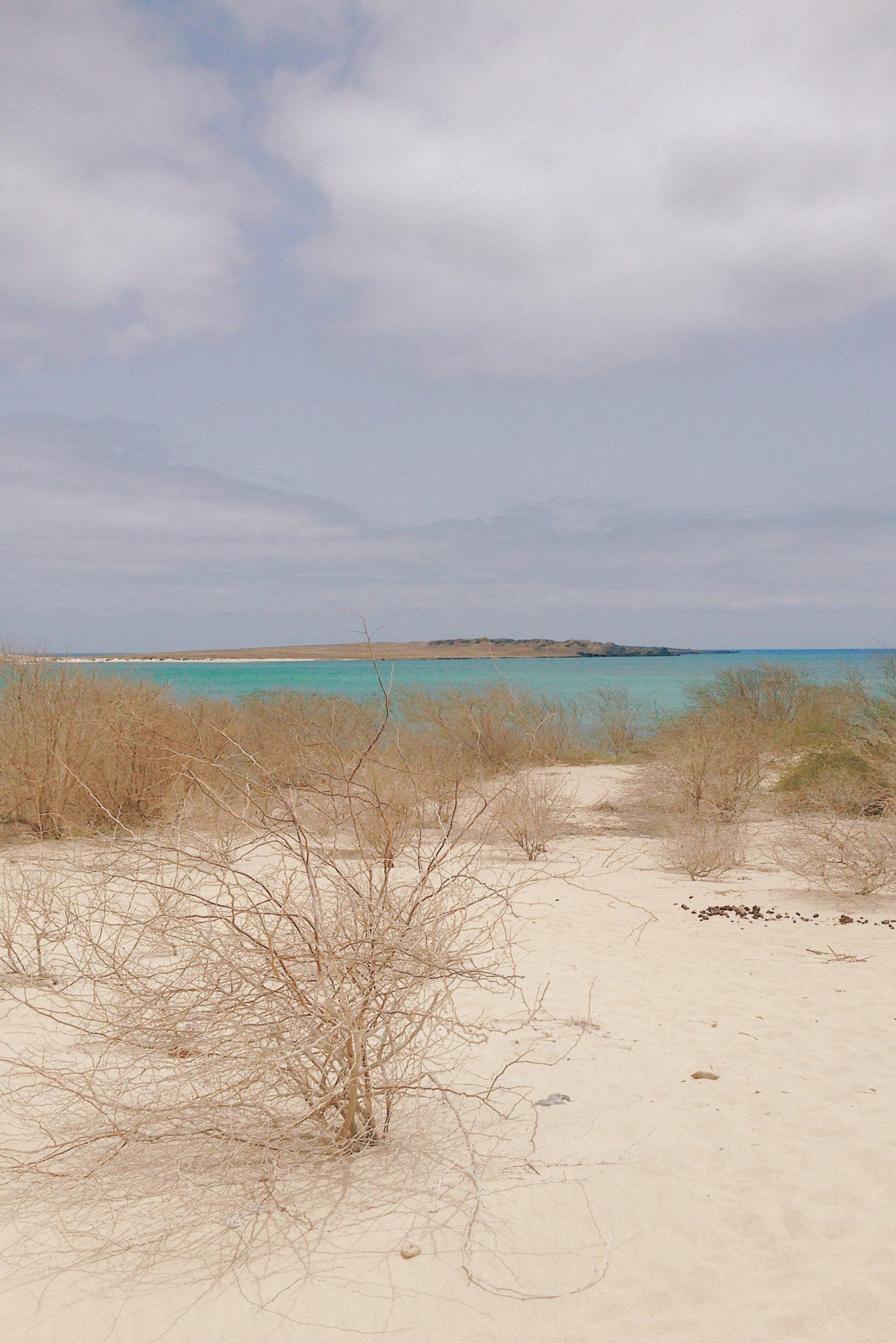 Des dunes de sable blanc à perte de vue