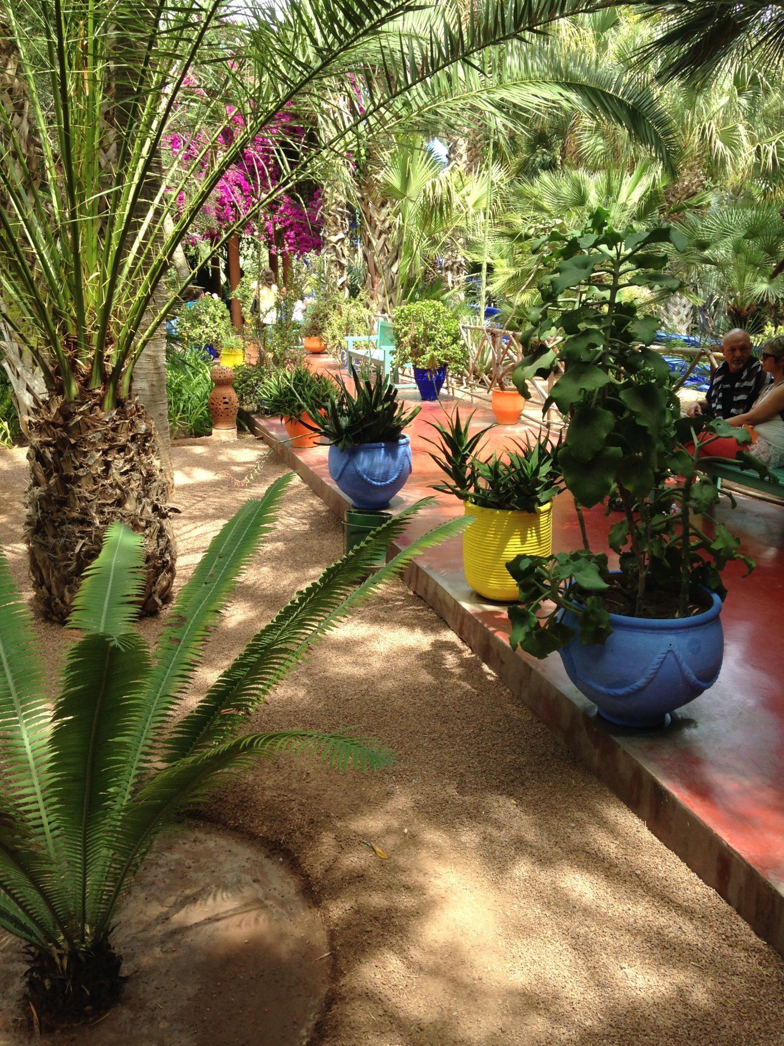 Découverte du Jardin Majorelle - Marrakech / Lepoint2départ