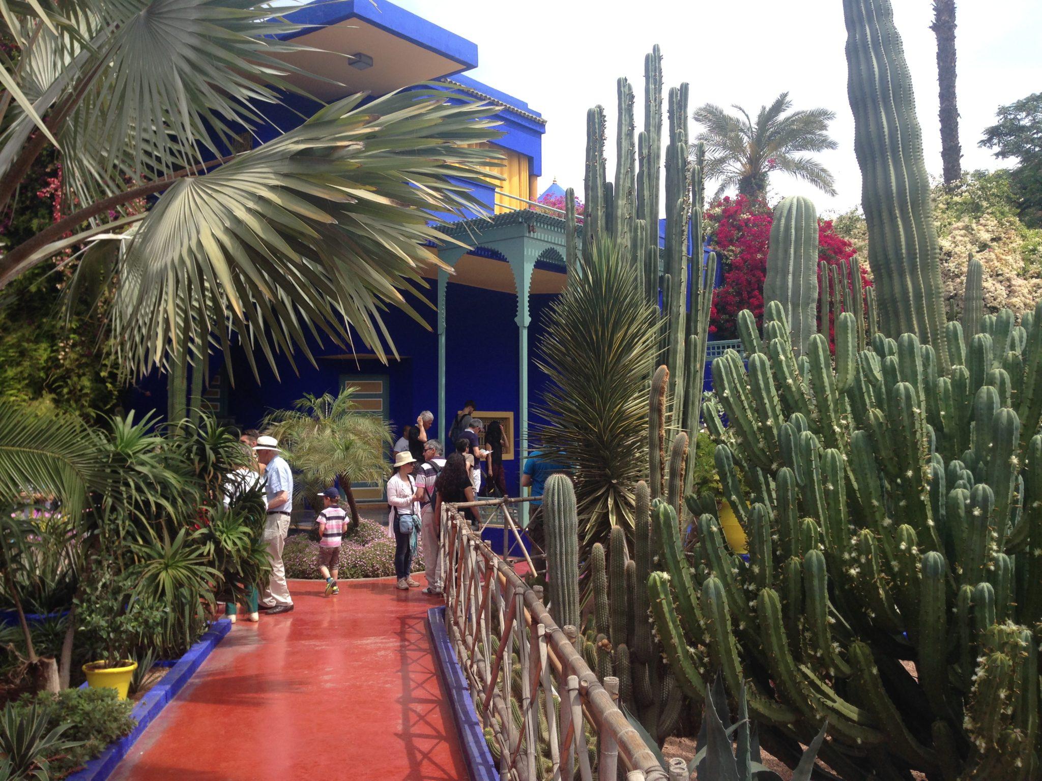Allée principale de la Villa Oasis au cœur du Jardin Majorelle