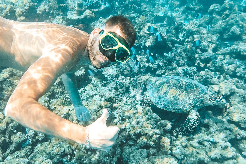 Julien à la découverte des merveilles des fonds marins