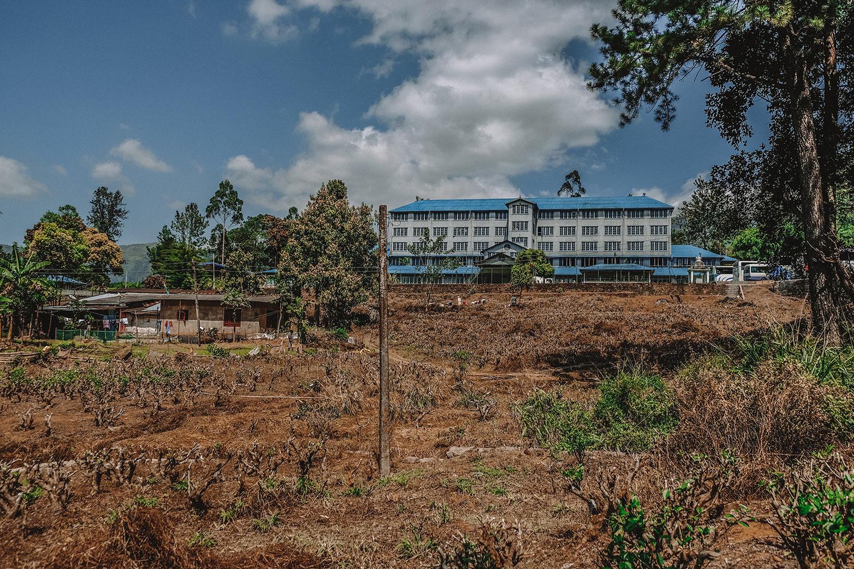 L'usine où sont transformées les feuilles de thé