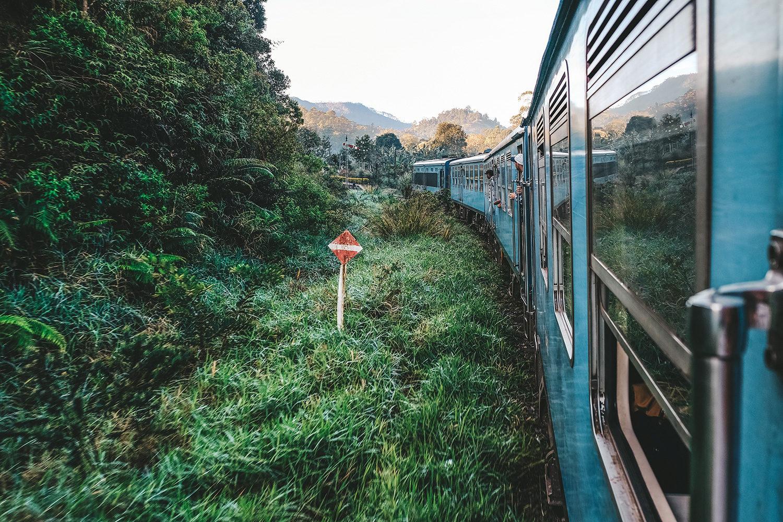 Autour du train une végétation verdoyante