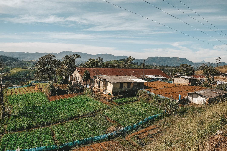 De nombreuses petites maisons et ses cultures