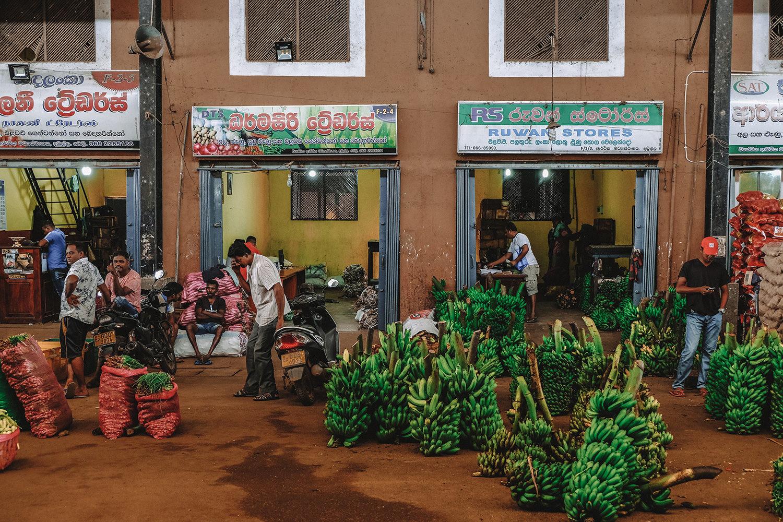"""Début de la visite du """"Dambulla Dedicated Economic Center"""""""