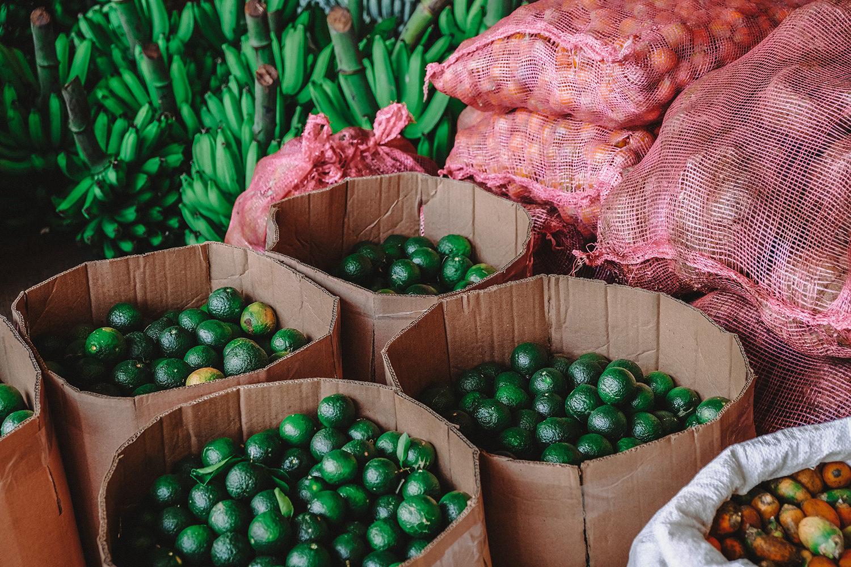 Magnifiques couleurs des fruits et légumes frais