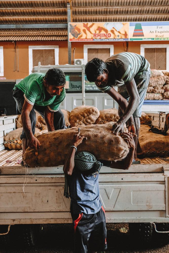 Déchargement des énormes sacs de pommes de terre