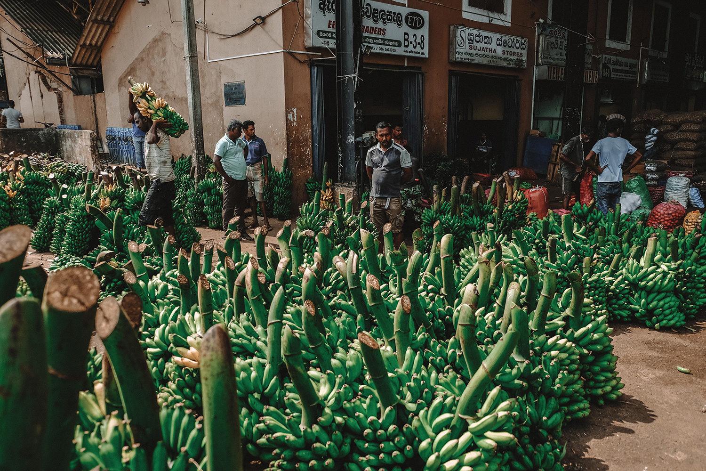 Le plus grand stand de bananes