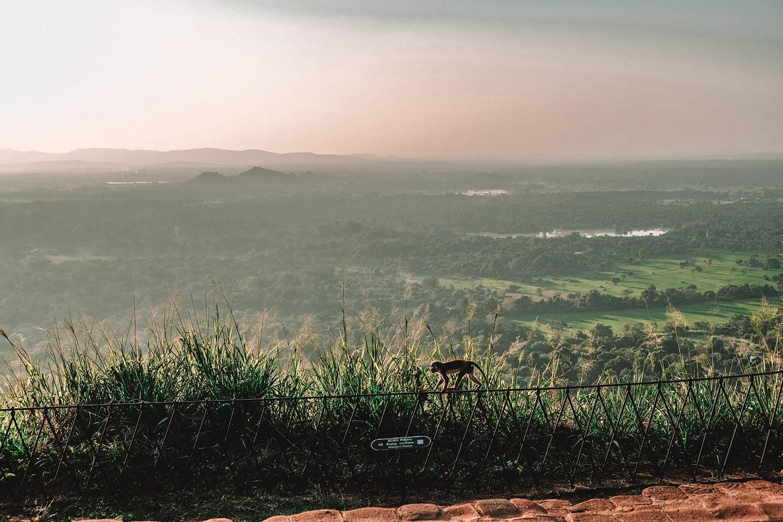 Coucher de soleil sur Sigirîya