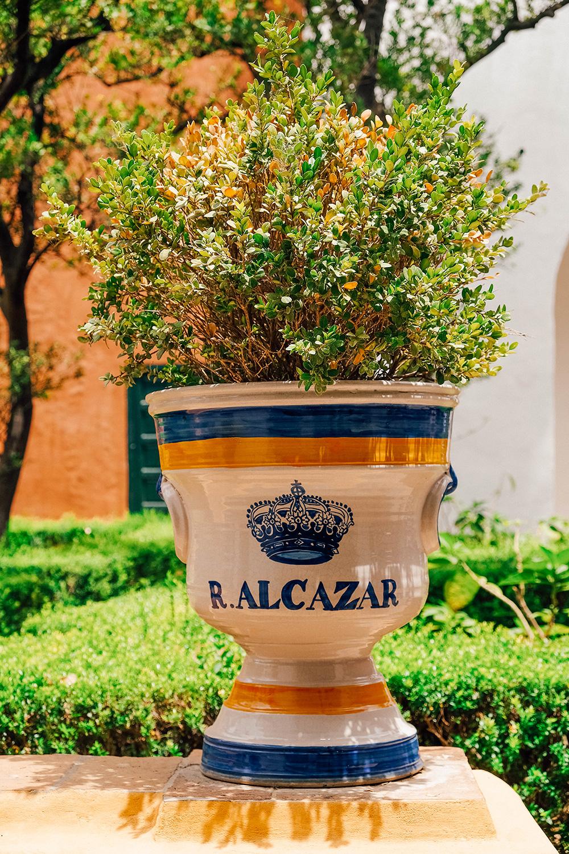 Des poteries immenses bordent les jardins