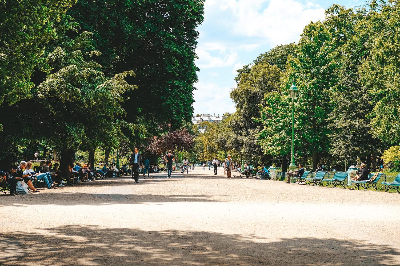 La grande allée du parc