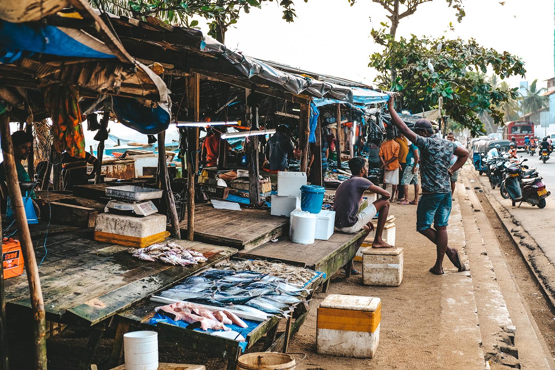 Un marché aux poissons frais