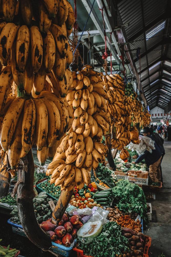 Plusieurs mètres d'étalages de bananes