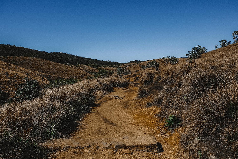 Début de la randonnée à Horton Plains