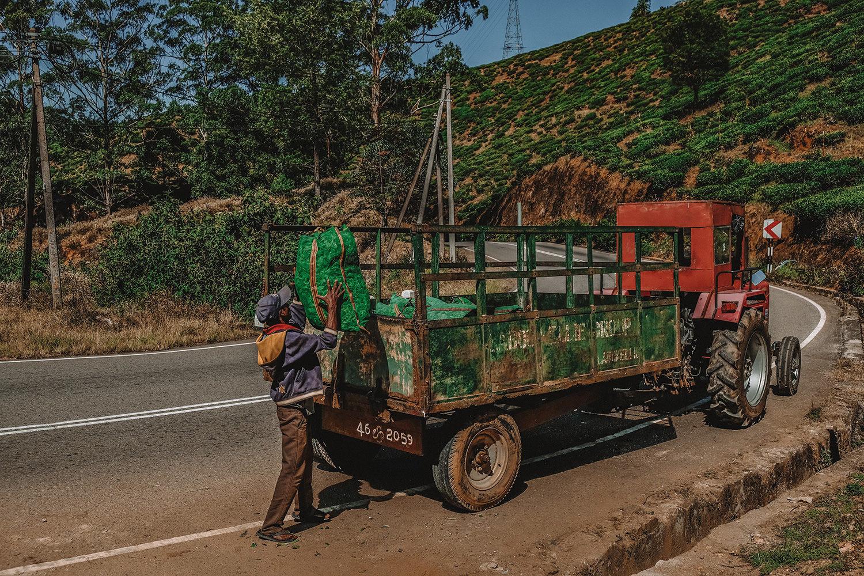 Camion transportant les récoltes du matin