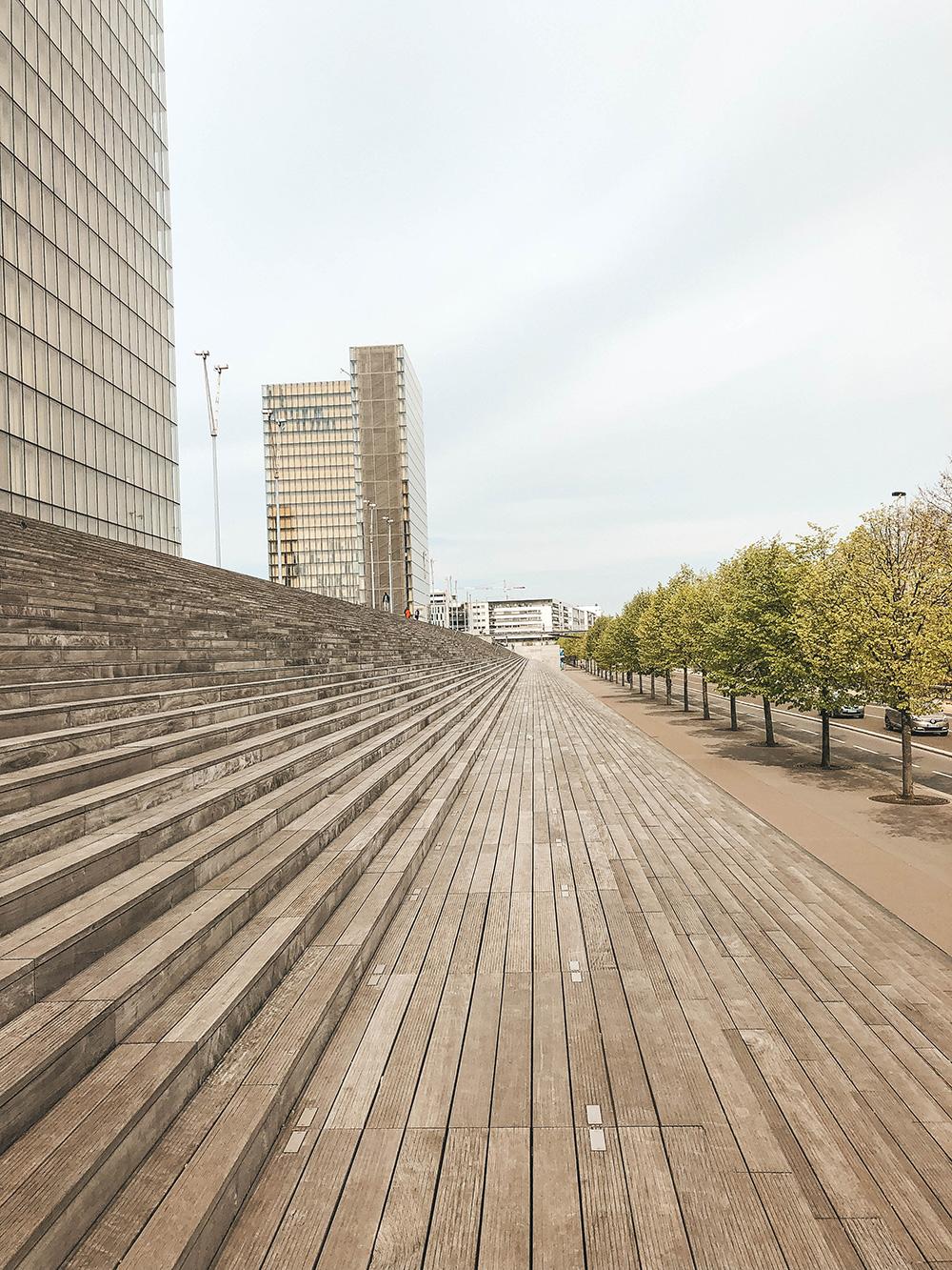 Les escaliers vertigineux du site