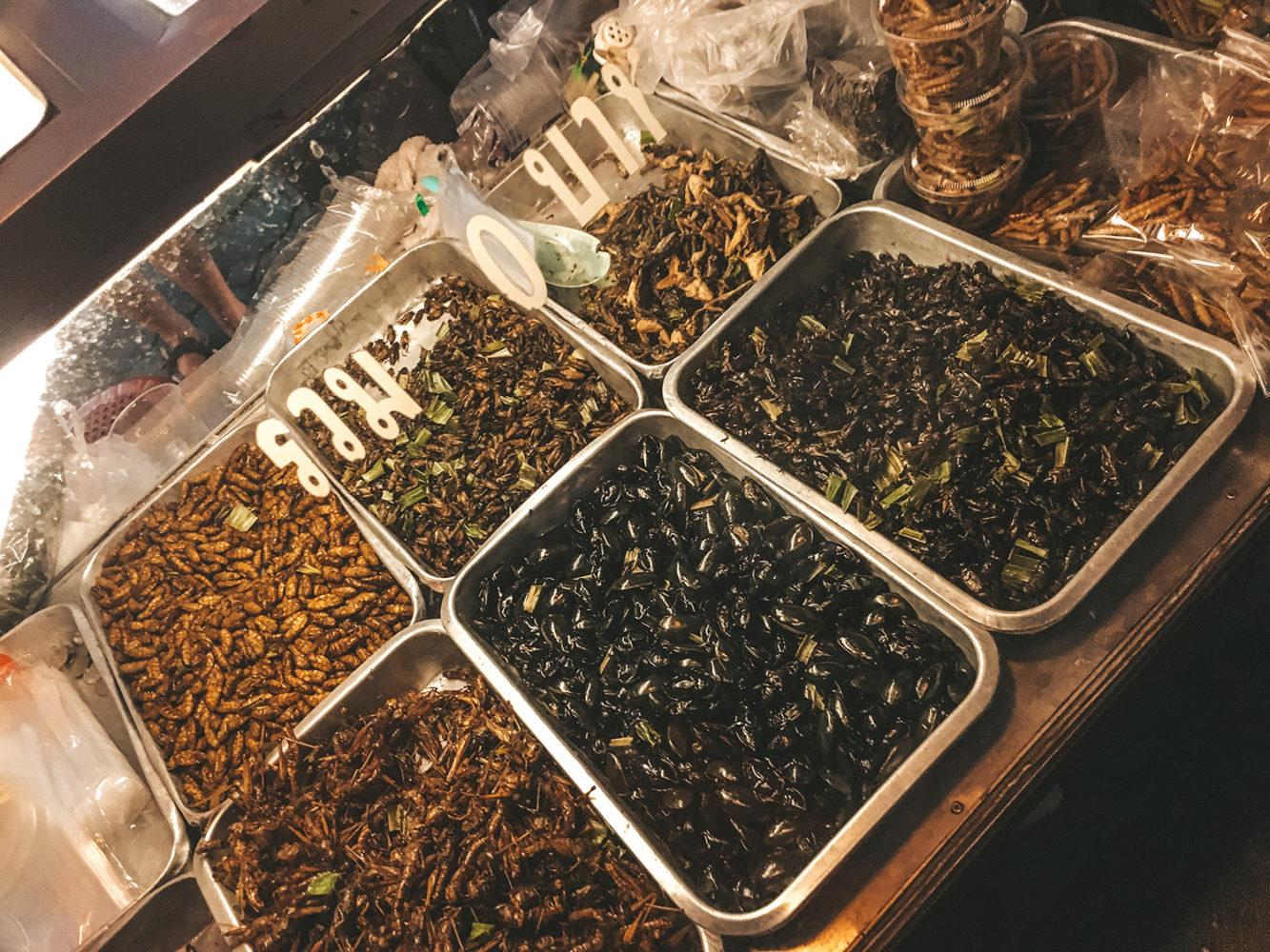 Stand d'insectes grillés