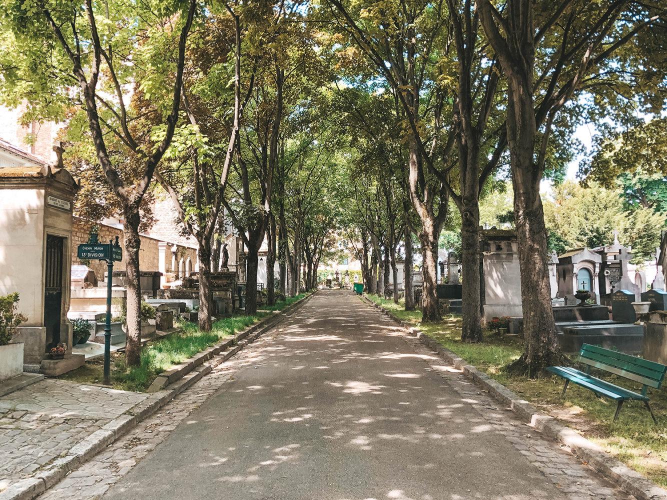 Une des grandes allées arborées du cimetière