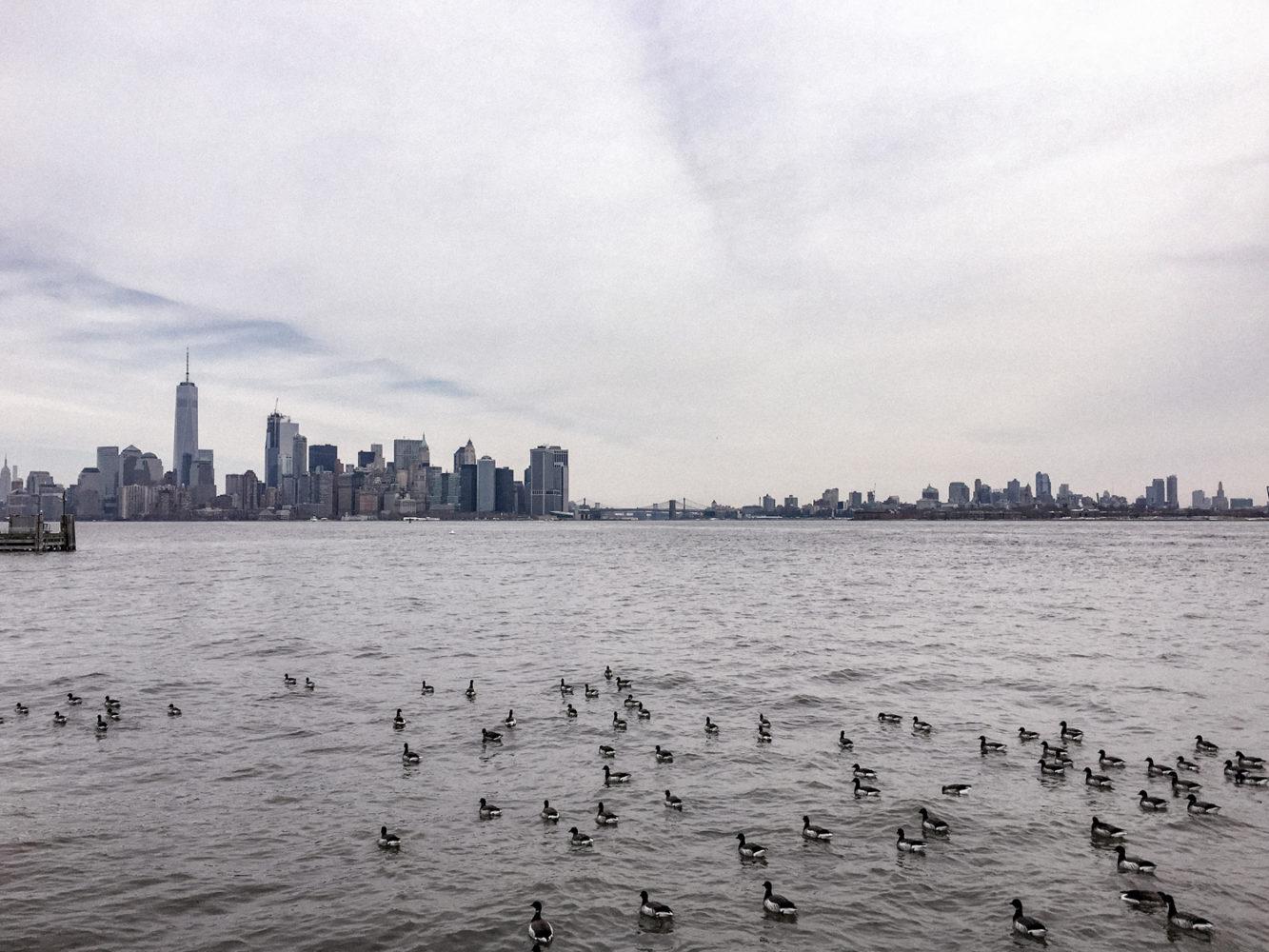 Vue sur Manhattan et Brooklyn