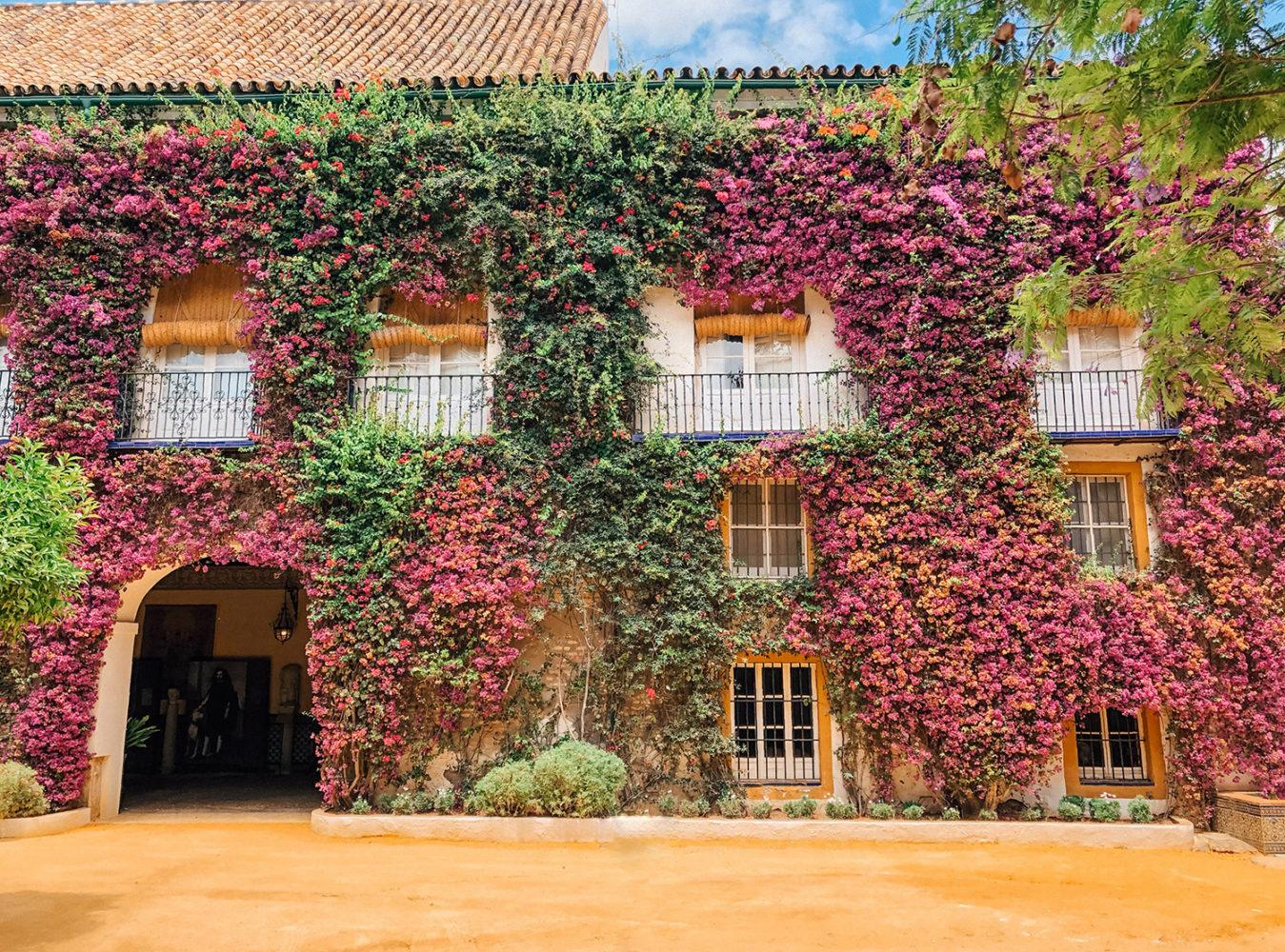 Le patio intérieur maculé de fleurs roses, absolument magnifique !