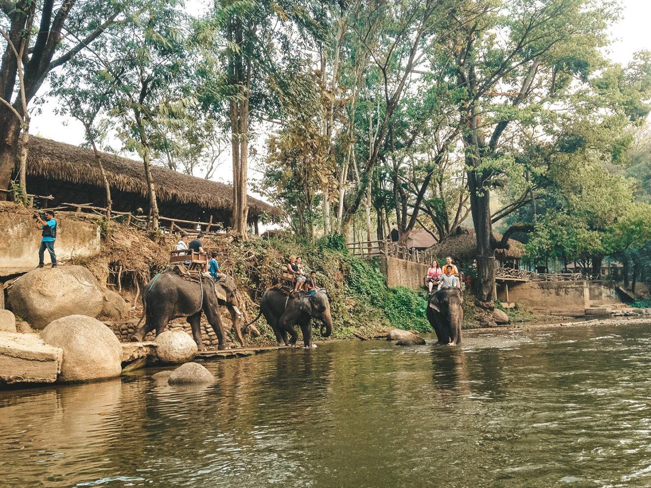 La fameuse balade à dos d'éléphant