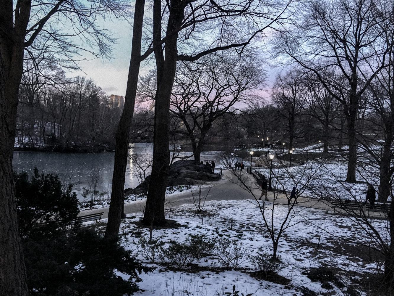 Vue sur Central Park depuis Upper East Side