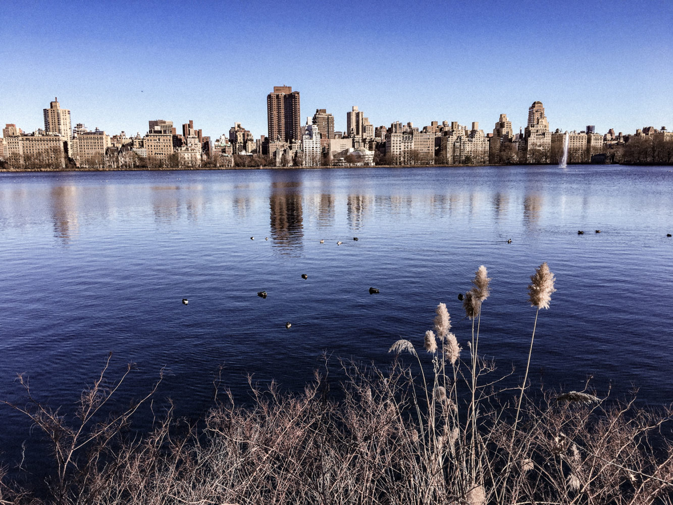 Vue sur le plus grand lac de Central Park