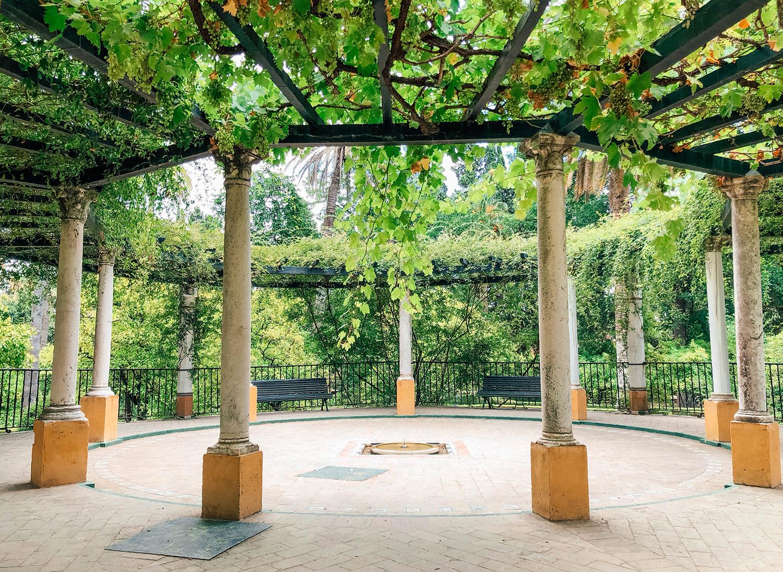 Petit coin de tranquillité à l'ombre des vignes
